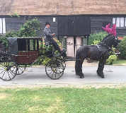 Horse and Carriage Hire in Newbiggin by the Sea